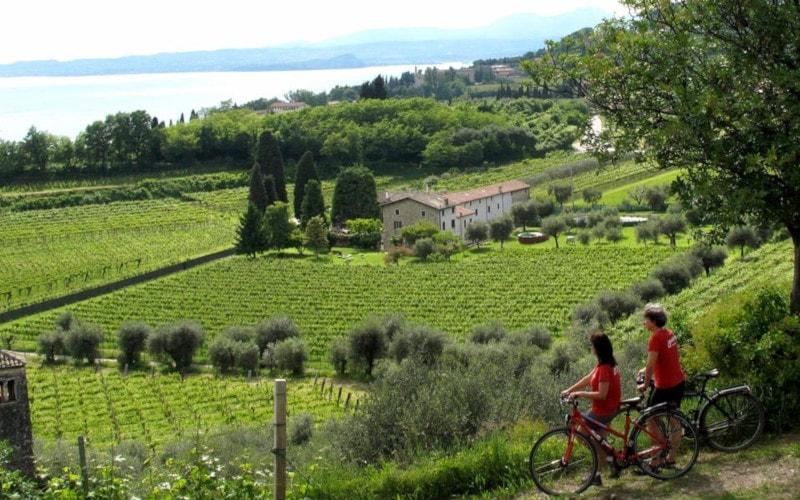 Lake Garda bike tour Bardolino